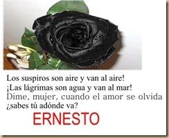 ERNESTO (2)